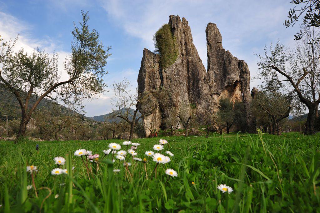 Parco Ausoni: il 5 giugno a Camposoriano per la Giornata Mondiale Ambiente2018