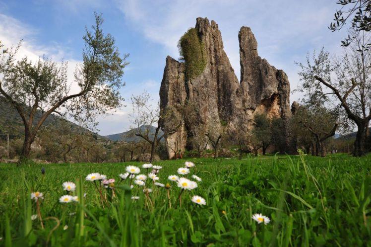 Ente Parco Ausoni - foto hum RavaS.Domenico a Camposoriano -legg