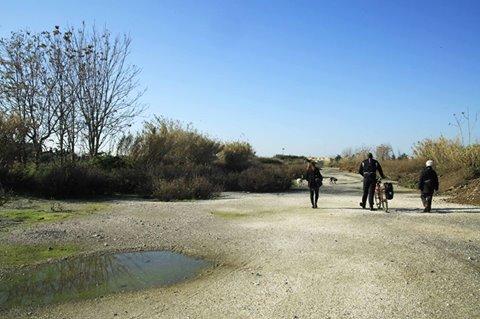 """la Voce del Territorio: eventi e progetti del Comitato de """"il Parco che non c'è RomaEst"""