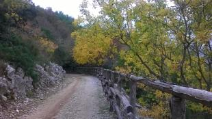 Orto Botanico 4