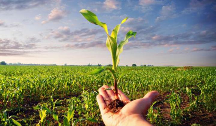 AGRICOLTURA. REGIONE LAZIO A CONFRONTO SU MULTIFUNZIONALITÀ: E' VOLANO PER AGROECONOMIA ROSATI: COSI' OFFRIAMO SERVIZI MIGLIORI ALLE AZIENDE E ALLAGENTE