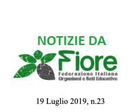 Notizie da Fiore, Federazione Italiana Organismi e reti Educative – 19 luglio2019