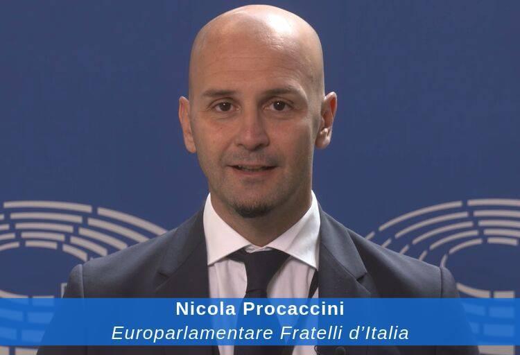 Nicola-Procaccini_-tw-002.jpg