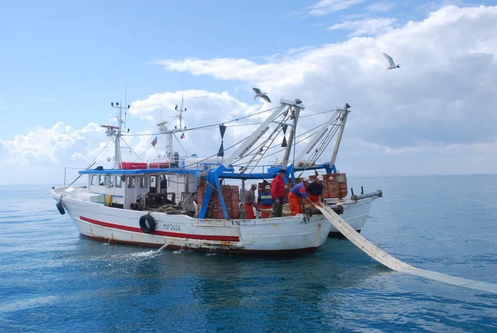 pesca11-177890.jpg