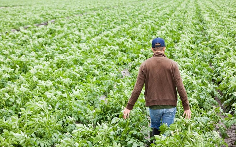 Manovra: Cia, direzione giusta; no aggravi fiscali per agricoltori
