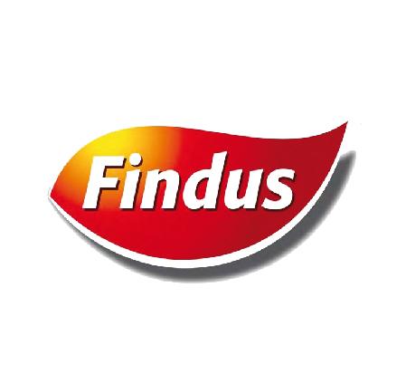 CORONAVIRUS. FINDUS DONA 1 MLN DI EURO ALLO SPALLANZANI /FOTO PER FINANZIARE PROGETTO RICERCA E ACQUISTARE PRESIDIPROTETTIVI