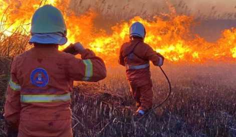incendio-lago-bracciano-220620