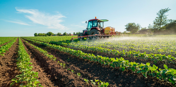 "AGRICOLTURA: GASPARRI ""SALVARE PIANTAGIONI KIWI NELL'AGROPONTINO"""